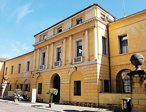 Museo naturalistico archeologico di Vicenza magazine eventi vicenza cosa fare a vicenza marzo 2018 ilaria rebecchi gatte vicentine donne di vicenza