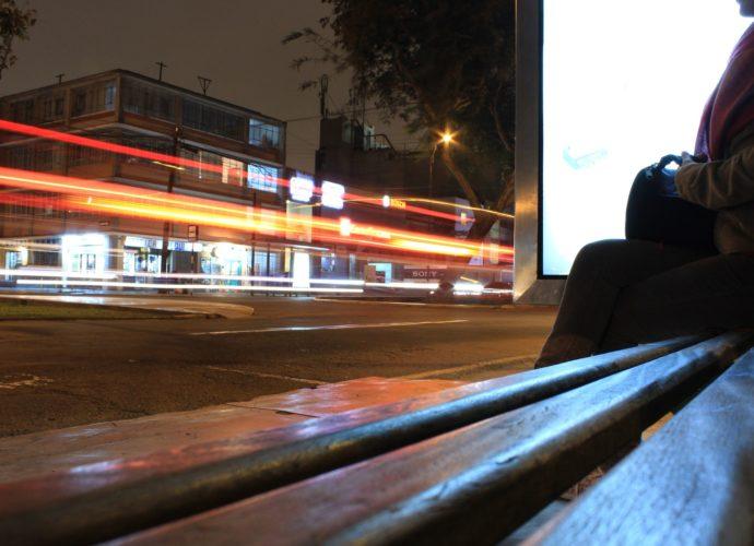 autobus notturno a vicenza magazine delle donne di vicenza cosa fare a vicenza trasporti vicentini apt aim vicenza come viaggiare a vicenza gatte vicentine
