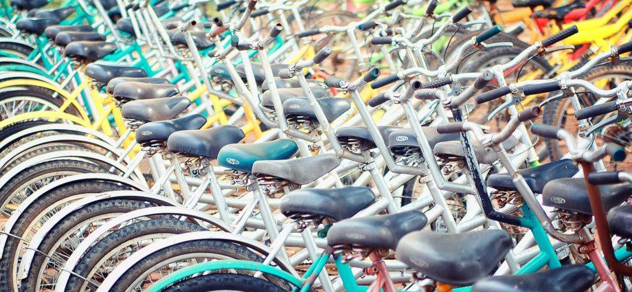 dove parcheggiare la bici a vicenza dove parcheggiare la bicicletta a vicenza trasporti veneto magazine vicenza news veneto cosa fare in veneto cosa fare a vicenza furti bici veneto furti bici italia furti bici vicenza ilaria rebecchi gatte vicentine donne di vicenza
