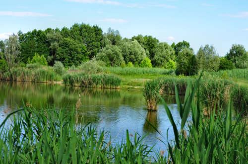oasi di casale