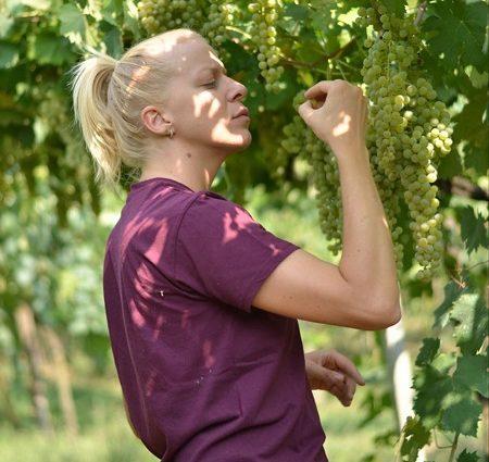 diletta tonello gatte vicentine cosa fare a vicenza vino donne vicentine ilaria rebecchi video intervista